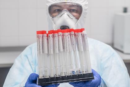 В России выявили 8572 новых случая заражения коронавирусом