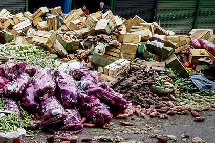 В России захотели ввести переработку пищевых отходов к 2022 году