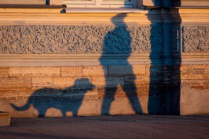 Российские подростки жестоко казнили собаку и сняли это на видео