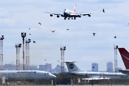 Росавиация приготовилась рассматривать заявки аэропортов на получение субсидий