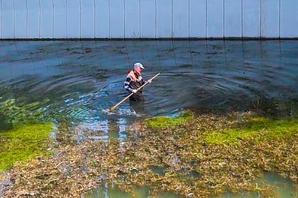 Российский коммунальщик косил водоросли в реке и попал на видео