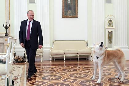 Путин настоял на закреплении в Конституции ответственного отношения к животным