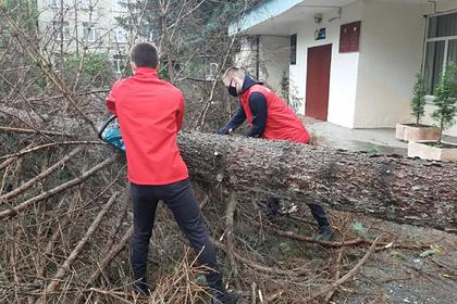 Активисты помогли устранить последствия урагана в Северной Осетии
