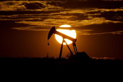 Российские нефтекомпании поддержали сокращение добычи
