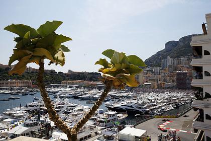 Раскрыты подробности роскошной жизни миллионеров в Монако