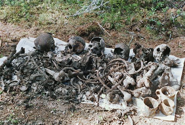 Останки расстрелянных в 1937 году в Сандармохе