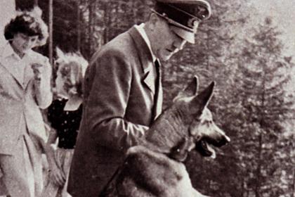 Раскрыты подробности отношения нацистов к разным животным