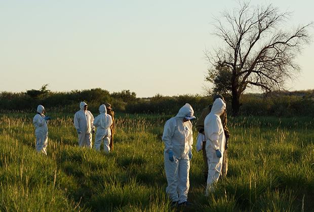 Немецкие и казахстанские ученые проводят тренинг «Биозащита и безопасность в полевых условиях и высокопатогенные инфекции, передающиеся грызунами»