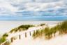 Самая длинная в мире песчаная пересыпь — Куршская коса в Калининграде, которая отделяет пресноводный Куршский залив от Балтийского моря. Ее максимальная ширина — почти четыре километра, общая протяженность — почти сотня километров, а вокруг — густо посаженные горные сосны. Когда-то местный лесничий предположил, что они помогут противостоять активным пескам — местные деревни буквально засыпало бродячими дюнами.