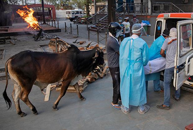 Сотрудники скорой помощи и родные умершего от коронавируса грузят его тело в машину