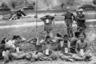 Военная полиция США охраняет северокорейских солдат, захваченных в плен 4 сентября 1950 года на линии фронта у реки Нактонган, во временном лагере для военнопленных недалеко от города Сувона. На заднем плане видно передвижение американских танков.