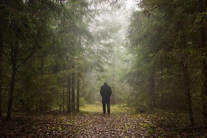 Пропадавшие без вести люди раскрыли истинные причины своего исчезновения