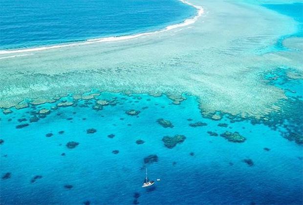 Рифы Минерва