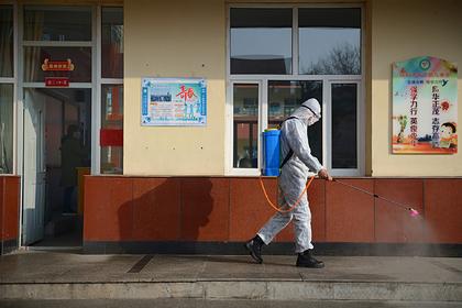 В граничащей с Россией стране начали борьбу с бубонной чумой