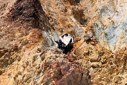 Сидевшая в Mercedes собака разбилась о скалы в Крыму из-за ошибки хозяйки