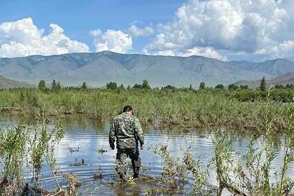 Россиянка выпивала с сожителем на речке и не заметила пропажи сына