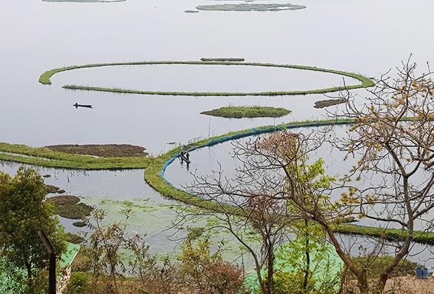 Это пресное озеро известно своими Пхумди — плавучими островами из мертвых и гниющих органических остатков, на которых произрастают растения. Местные жители используют воды озера для питьевых нужд, орошения и рыболовства. В сезон дождей Локтак затопляет близлежащие долины, которые используются для выращивания риса.