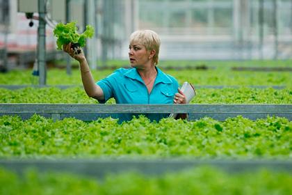 Ставропольским аграриям упростили доступ к льготным кредитам