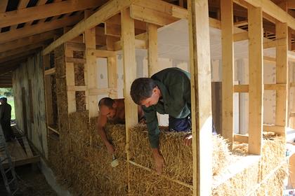 В России научились строить дома из пищевых отходов