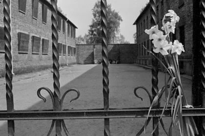 Пережившие Холокост рассказали о жестоких уловках нацистов
