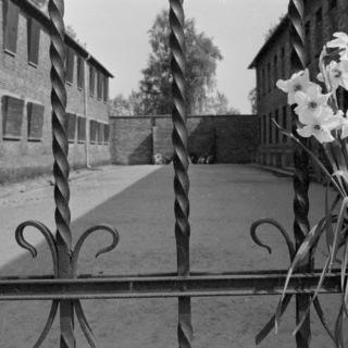 Бывший немецко-фашистский концлагерь на территории Польши близ города Освенцима (1940-1945 гг.) — ныне мемориальный музей