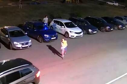 В российском городе бродячие собаки напали на гуляющих детей