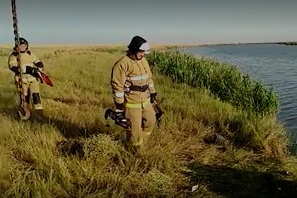 Стало известно состояние пилота рухнувшего российского вертолета