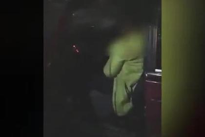 Российская учительница попалась на пьяной езде и обругала полицейских