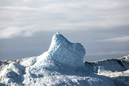 Ученый рассказал о таящихся в ледниках древних вирусах