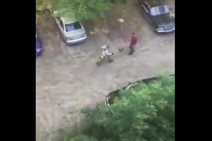 Погоня дворника с включенной газонокосилкой за россиянином попала на видео