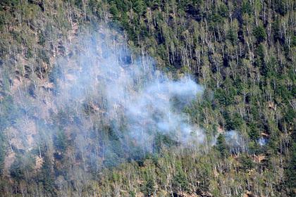 Последствия аномальной жары в Якутии оценили