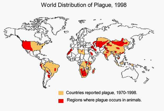 Природные очаги вспышек чумы
