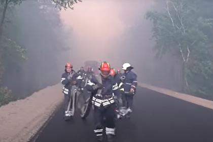 Украина заподозрила ЛНР в причастности к лесным пожарам в Луганской области