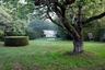 """В датской исторической деревне Эбельтофт (Ebeltoft) находится крупнейший частный сад страны — <a href=""""http://landezine-award.com/ellipse-garden/"""" target=""""_blank"""">Ellipse Garden</a>. Он появился как экспериментальная площадка художника Кьельда Слота (Kjeld Slot). На участке в 700 квадратных метров изначально паслись коровы, а затем появились причудливые лабиринты и потайные коридоры."""