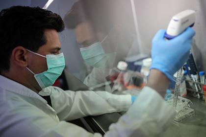 У переболевших коронавирусом появились длительные сбои иммунитета