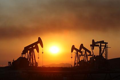 Предсказано будущее цен на нефть