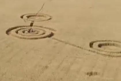 На поле в Воронеже нашли загадочные круги