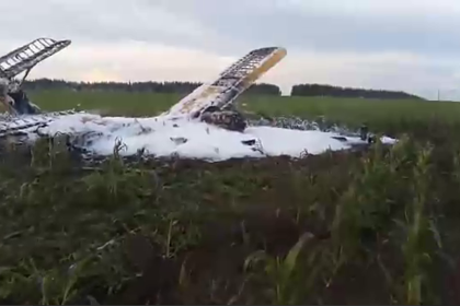 Появилось видео с места крушения Ан-2