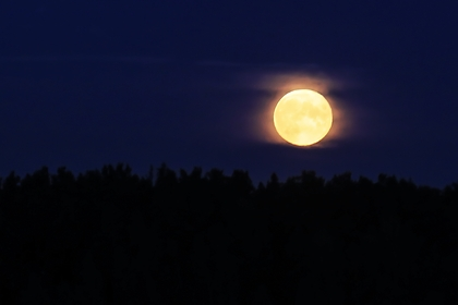 В «Роскосмосе» раскрыли подробности создания «лифта» на Луну