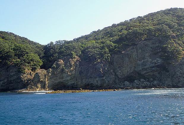 Бухта Литтл Вотерфолл Бэй на острове Грейт-Барриер, к берегу которой прибило яхту
