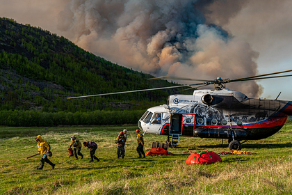 Правительство выделит регионам 2,6 миллиона рублей на тушение лесных пожаров