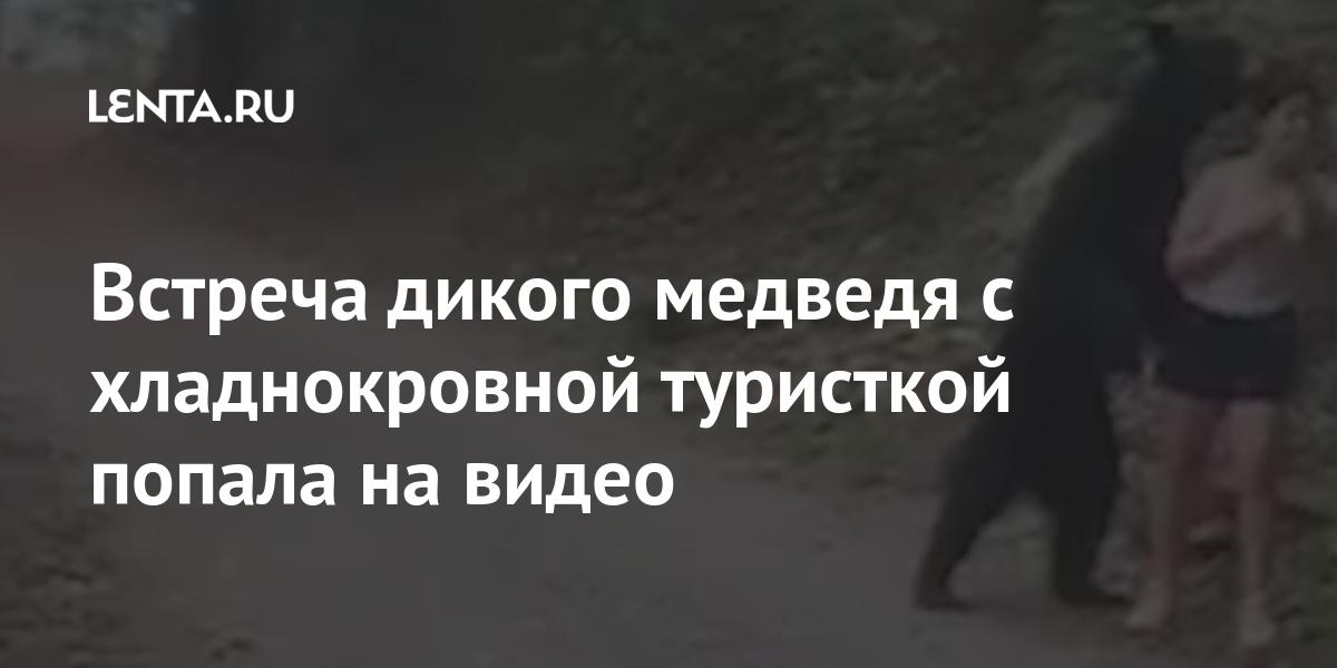 Встреча дикого медведя с хладнокровной туристкой попала на видео