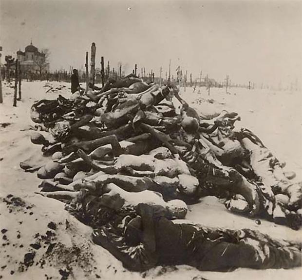 Незахороненные трупы умерших от голода на кладбище в Бузулуке, декабрь 1921 года