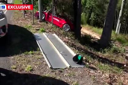 Владелец редкого незастрахованного суперкара разбил его о дерево