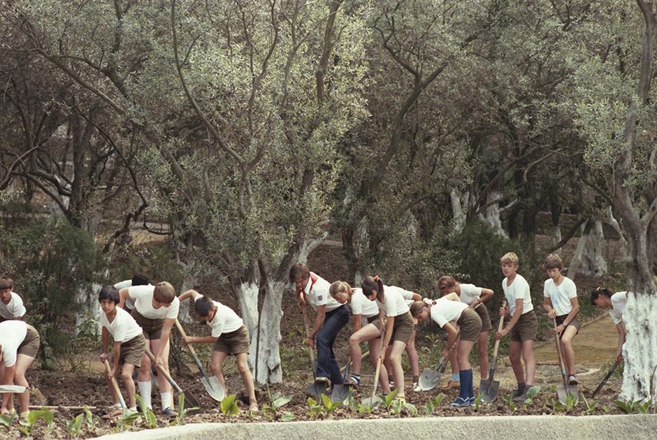 1985 год. Участники «зеленого патруля» ухаживают за зелеными насаждениями