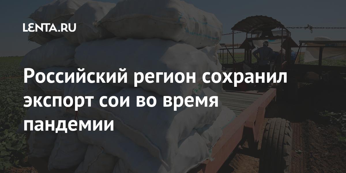 Российский регион сохранил экспорт сои во время пандемии