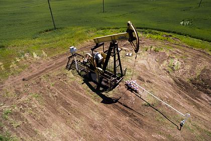 Белоруссия снизила закупки нефти у России