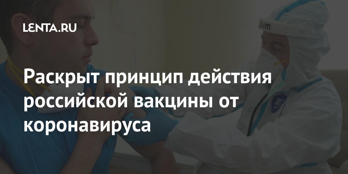 Раскрыт принцип действия российской вакцины от коронавируса