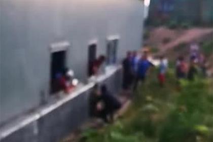 Российские рабочие мучали пойманного медвежонка и попали на видео