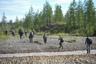 Для этого исследователи собирают образцы почвы, растений, воды и донных осадков в нескольких точках — на берегу самой реки и в окрестной заболоченной тундре. Каждый день участникам приходилось преодолевать пешком около 10 километров.